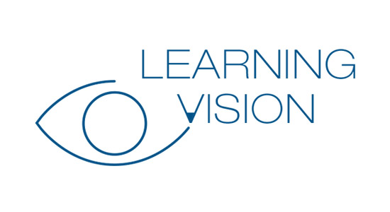 Vision in learning logo design