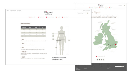 Technical Illustrations and infographic design for website pages
