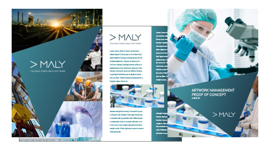 Maly IT Brand Literature Design
