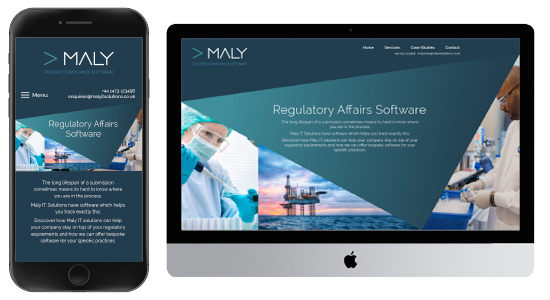 Maly IT Website Design