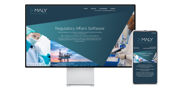 Maly IT Website Design Visual