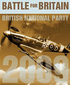 Polish Spitfire Image