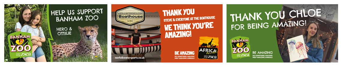 Zoological Society of East Anglia 'Be Amazing' Campaign